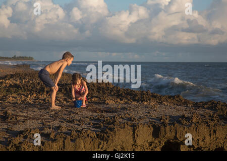 Boy and sister playing with toy bucket on beach, Blowing Rocks Preserve, Jupiter Island, Florida, USA - Stock Photo