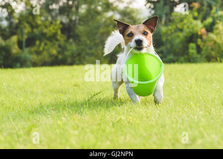 Funny gardener carrying green small bucket at lawn - Stock Photo