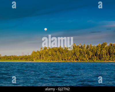 Tropical palm trees on beach and full moon, with water in foreground, Telo Islands, Indonesia - Stock Photo