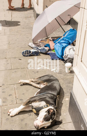 A homeless woman staying out of the sunshine by sitting underneath an umbrella on the pavement. Her pet dog is sleeping - Stock Photo