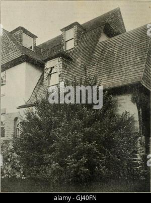 Descriptive catalogue - ornamental trees, shrubs, vines, evergreens, hardy perennials and fruits (1902) - Stock Photo