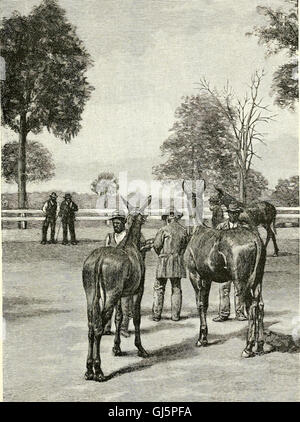 The blue-grass region of Kentucky - and other Kentucky articles (1892)