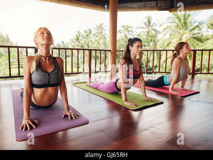 Shot of young women doing cobra pose on fitness mat at health club. Three female doing core stretch in row at the - Stock Photo