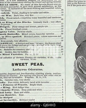 Descriptive catalogue of vegetable, flower, and farm seeds (18uu) - Stock Photo