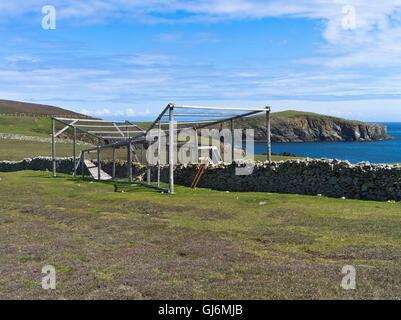 dh FAIR ISLE SHETLAND Bird cage heligoland trap for recording ...
