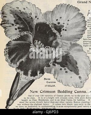 Dreer's quarterly wholesale price list - seeds plants bulbs tools fertilizers sundries &c (1897) - Stock Photo