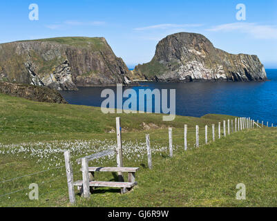 dh Sheep Rock FAIR ISLE SHETLAND Large sea stack Vaasetter The ...