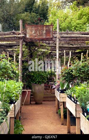 Great Britain, London, café, garden, gastronomy, spring - Stock Photo