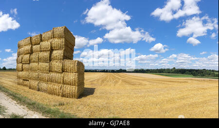 Stacked straw bales on a stubble field - Stock Photo