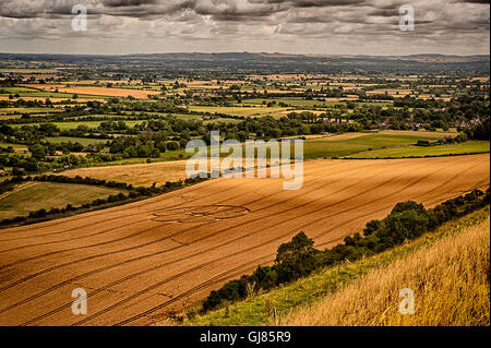 Crop Circles - White Horse - Westbury - Stock Photo