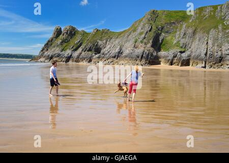 Dog walking and having fun on a deserted beach - Stock Photo