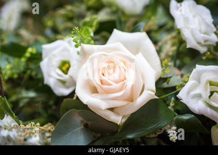 Perfect pale cream rosebud in a bouquet floral arrangement for a wedding - Stock Photo