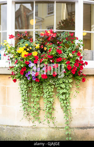 Colorful window box of flowers on a west bay window in a town - Stock Photo