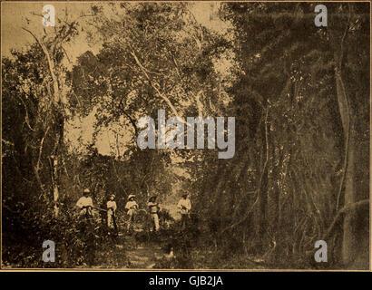 Blätter für Aquarien- und Terrarien-Kunde (1902) - Stock Photo
