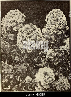 Lilly's complete annual - bee supplies spray materiels poultry supplies fertilizers seeds (1915) - Stock Photo