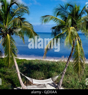 A woven cotton hammock suspended between two curving palm trees beckons vacationers to relax in the sunshine and - Stock Photo