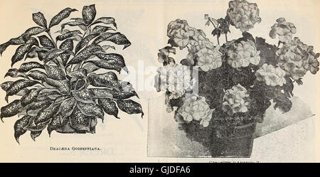 Dreer's quarterly wholesale price list - tools, fertilizers, insecticides, sundries, etc (1900) - Stock Photo