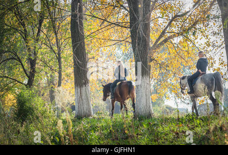 Girls  riding a horse on autumn forest - Stock Photo