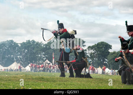 2nd Battalion 95th Rifles on the battlefield of a Napoleonic war reenactment at Spetchley Park, Worcestershire, - Stock Photo