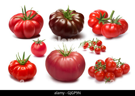 Collection of different tomato cultivars. Various shapes and colors. Heirloom tomatoes. Clipping paths, shadows - Stock Photo