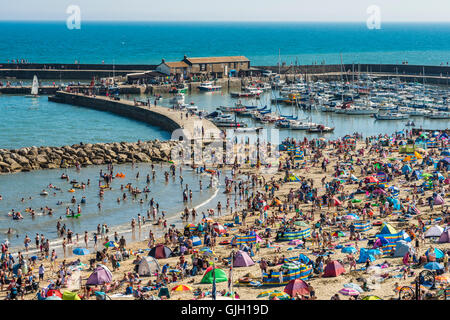 Lyme Regis, Dorset, UK. 16th Aug, 2016. UK Weather. Sunbathing holidaymakers pack the beach on a glorious sunny - Stock Photo