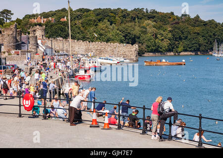Conwy, North Wales, UK. 17th August 2016. Crowds on the medieval quay at Conwy enjoy the continuing warm weather. - Stock Photo