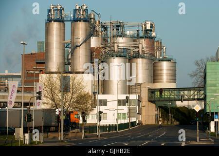 Deutschland, Nordrhein-Westfalen, Wesseling bei Köln, Evonik Degussa, ein Unternehmen der Evonik Industries AG, - Stock Photo
