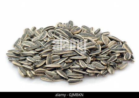 sunflower cores heap pile - Stock Photo