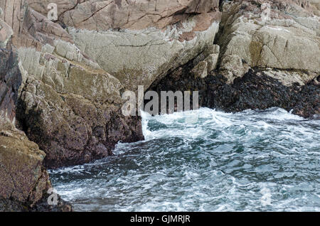 Bands of barnacles and rockweed surround a sea cave in cliffs, Mount Desert Island, Maine. - Stock Photo