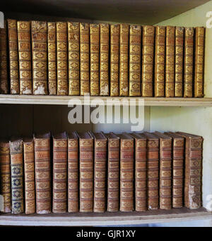 MAFRA, PORTUGAL - JULY 17, 2016: Old books in the library of Mafra Palace, Portugal - Stock Photo