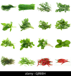 food aliment spice - Stock Photo