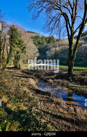 Tamar ANOB Winter; Devon; UK - Stock Photo