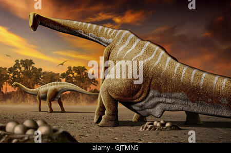 A female Apatosaurus laying her eggs in nest - Stock Photo