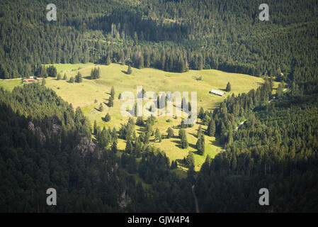 Aerial view of green pastures of Eibelsfleck alp surrounded by dark forest from Mount Benediktenwand summit in the - Stock Photo