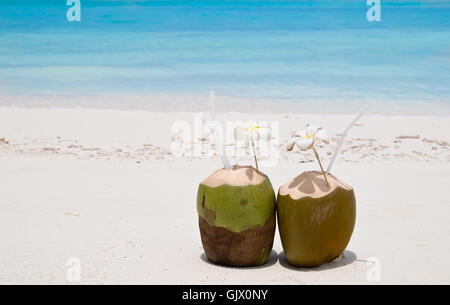 beach cocktails - Stock Photo
