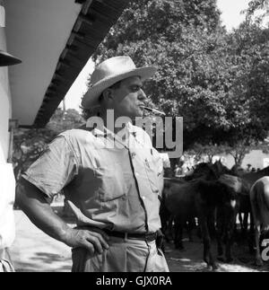 Auf dem Viehmarkt, Kolumbien 1960er Jahre. On the cattle market, Colombia 1960s. - Stock Photo