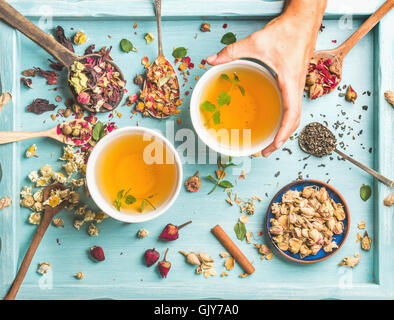 Two cups of healthy herbal tea with mint, cinnamon, dried rose and camomile flowers in different spoons and woman's - Stock Photo