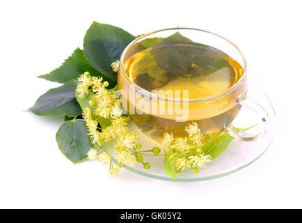 tea lime blossom - tea from lime blossom 01 - Stock Photo