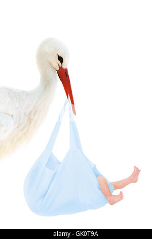 stork with baby in blue bag - Stock Photo