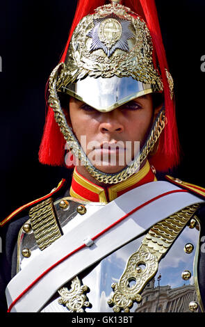 London England, UK. Household Cavalry - member of the Blues and Royals on duty at Horse Guards Parade - Stock Photo