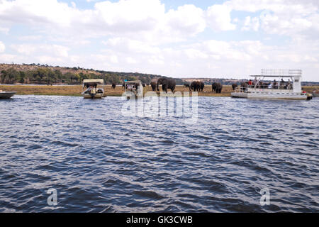Tourists game viewing on safari boats on the Chobe river Botswana Africa - Stock Photo
