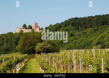 pfalz chateau castle - Stock Photo