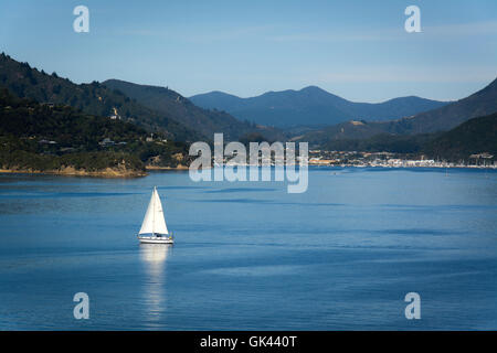 Port of Picton seen from ferry from Wellington to Picton, New Zealand - Stock Photo