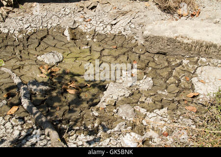 Drought environment in the cracked river bed - Stock Photo