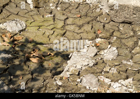 A dry cracked and textured surface of a drying pond - Stock Photo
