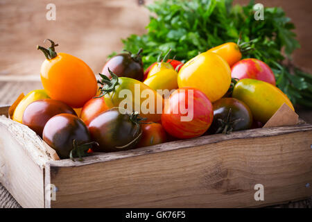 Assorted tomatoes  in wooden box. Composition of colorful vegetables in summer harvest time - Stock Photo