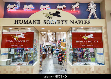 Naples Florida Coastland Center Shopping Mall shopping center shopping Humane Society Naples pet adoption center - Stock Photo