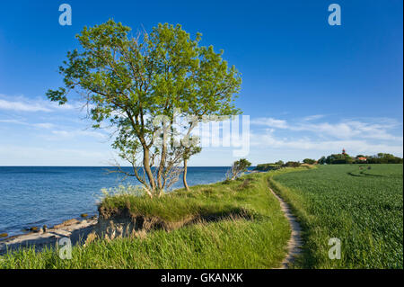 cliff staberhuk,insel fehmarn - Stock Photo