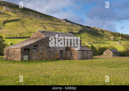 Scenic Swaledale upland wildflower hay meadows (old stone field barns, colourful sunlit wildflowers, hillside, blue sky) - Muker, Yorkshire Dales, GB.