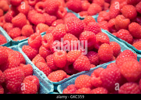 Punnets of fresh raspberries for sale at Granville Island Public Market in Vancouver, British Columbia, Canada. - Stock Photo